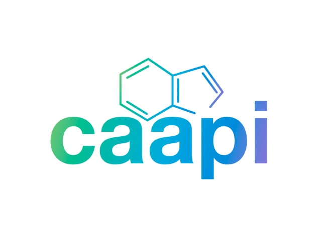 diseño-de-marca-branding-caapi