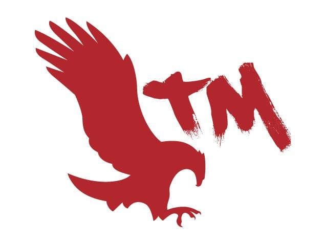 diseño-de-marca-branding-mt