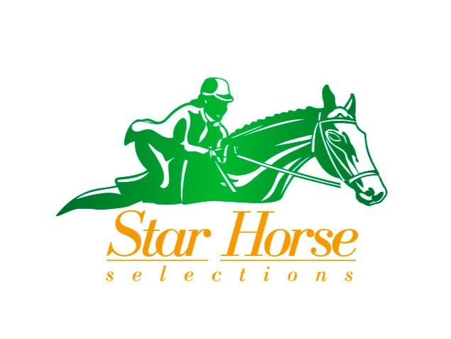 diseño-de-marca-branding-star-horse