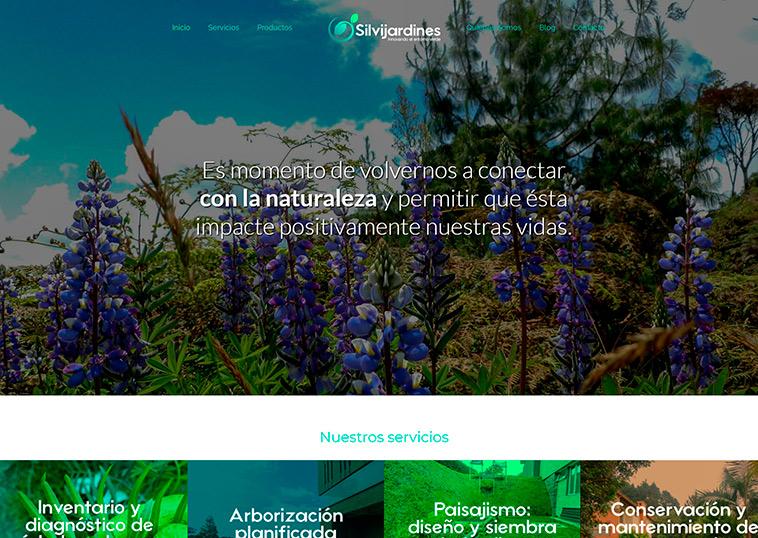 diseño-web-silvijardines